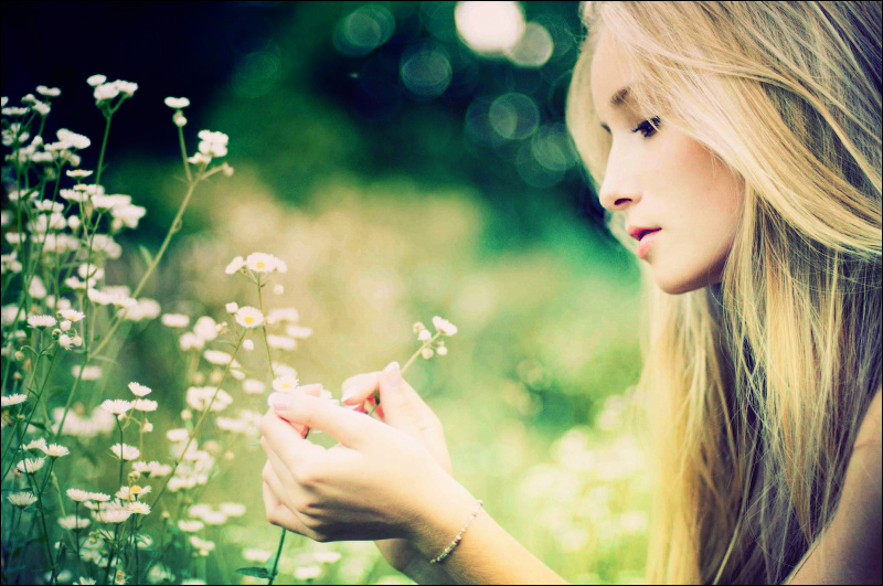 Telling fortune on daisies | blonde, nature, sideview, flower