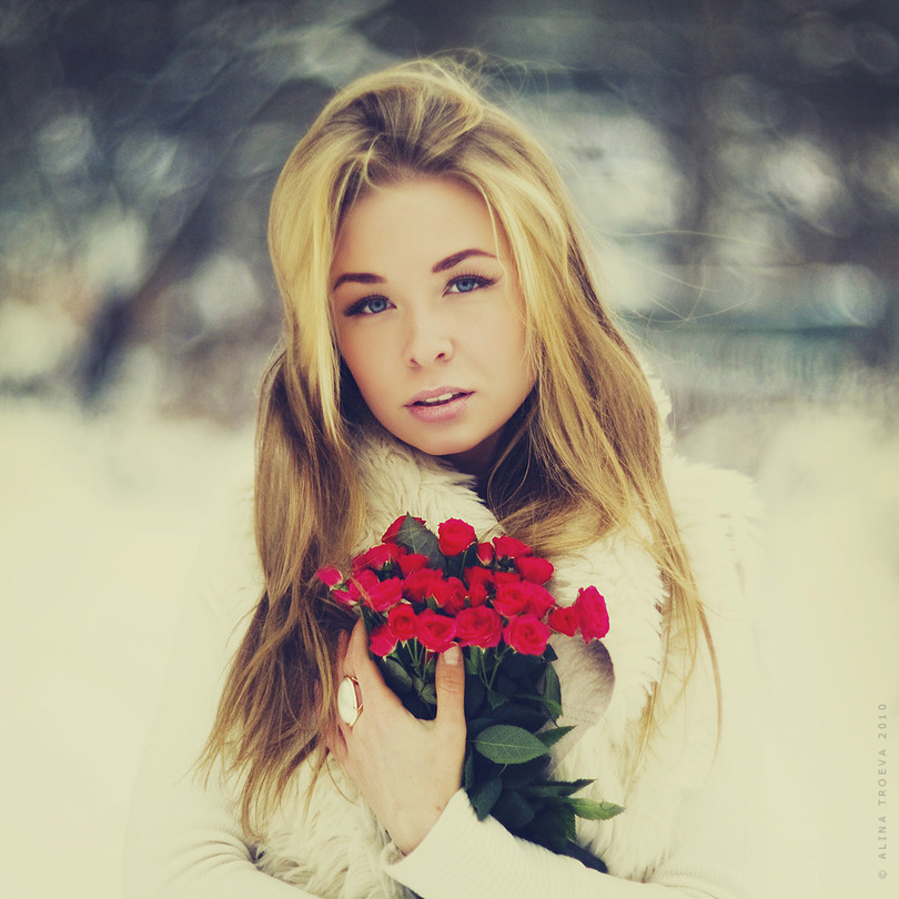 Roses | blonde, nature, rendering, flower