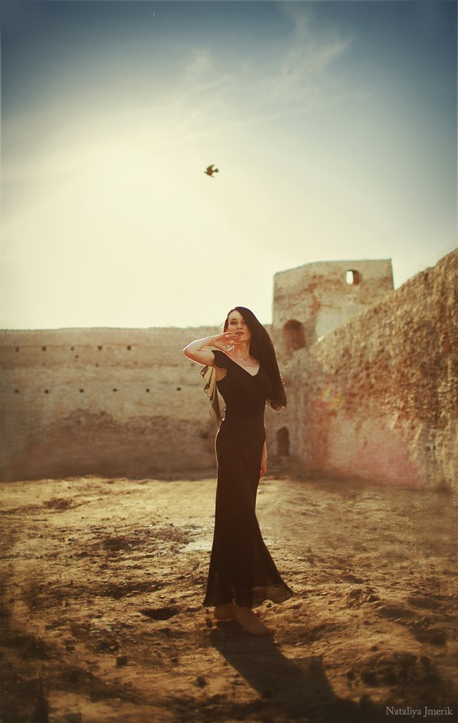 Bird flying in the sky | sky , bird, long black dress, wall