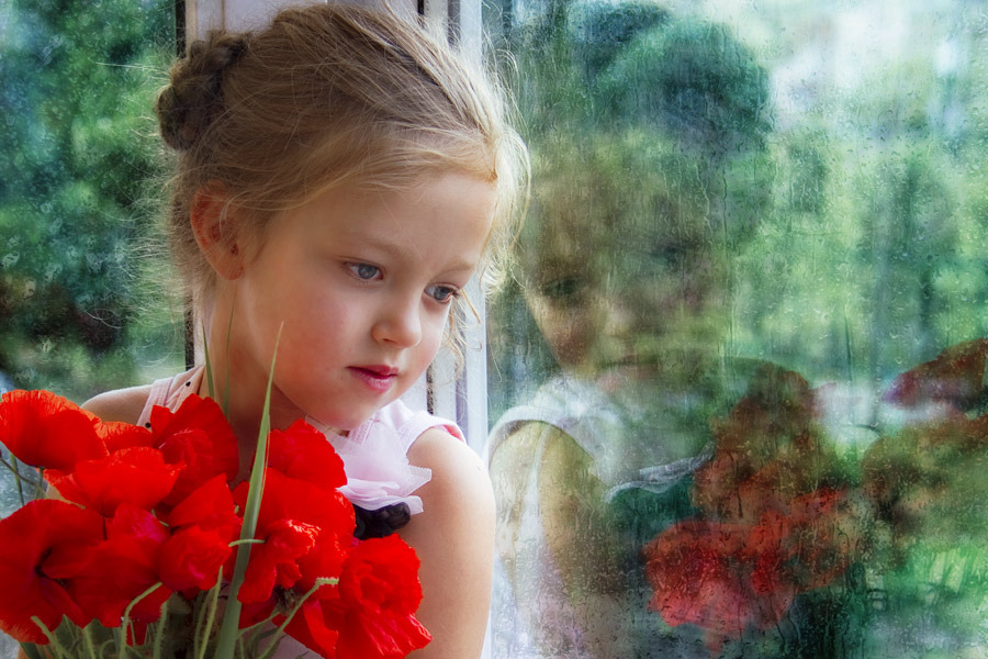 Angel with roses   child, rose, window, reflection
