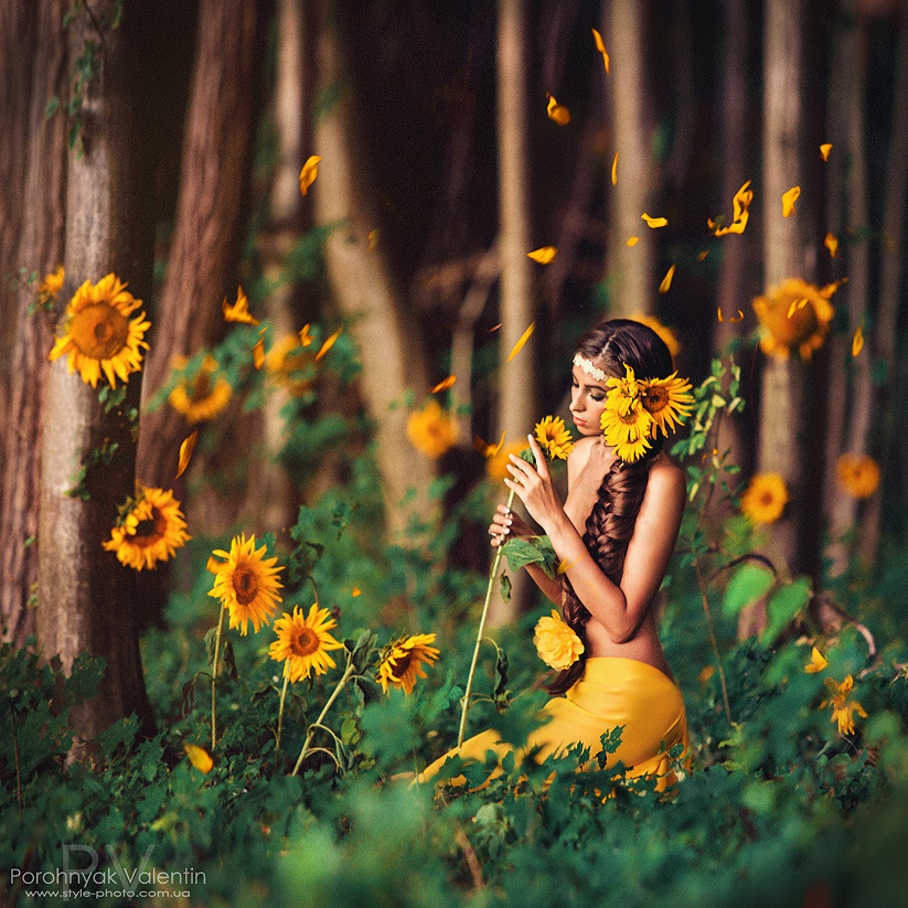 Yellow girl in the wood with sunflowers | sunflower, yellow, wood, forest, nature