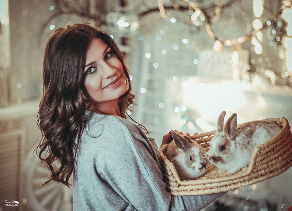 Pretty woman with rabbits | portrait, model, woman, brunette, hair-do, make-up, room, rabbit, basket, light