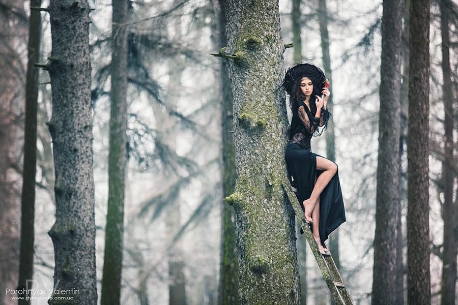Dark girl climbing a tree with a ladder | dark girl, black dress, tree, wood, forest, sky, autumn