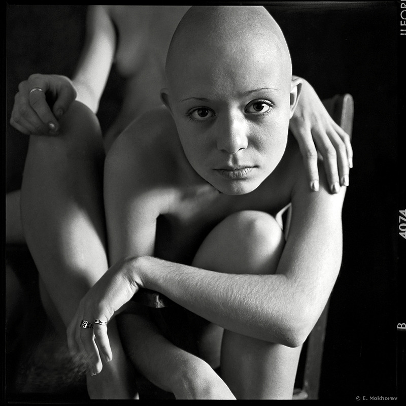 black & white hairless... | black & white, hairless
